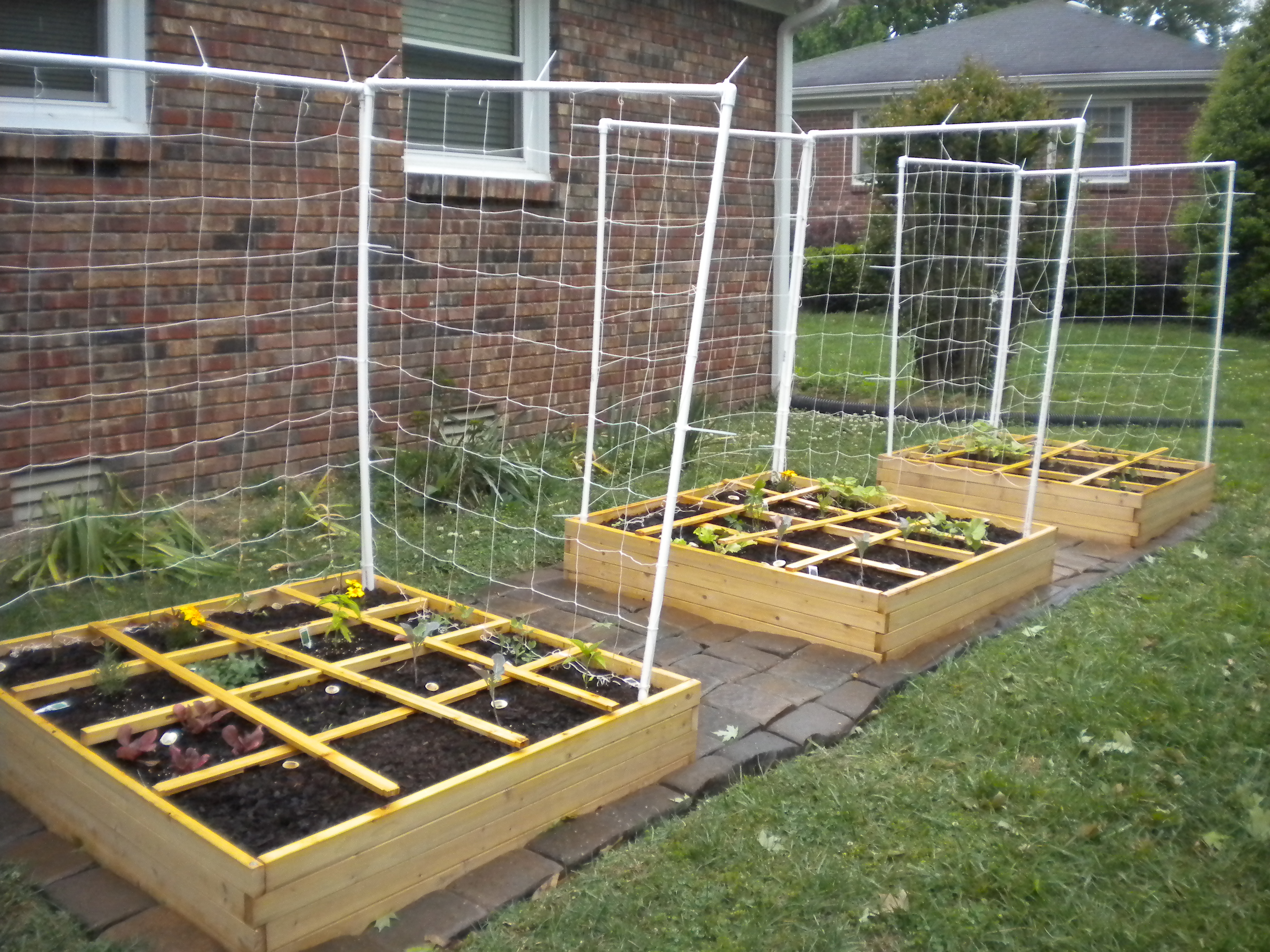 square foot garden never picture perfect